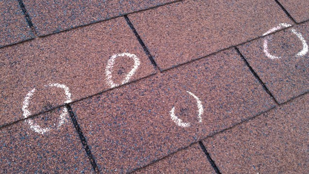 Hail Damaged Shingles